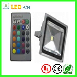 RGB Spotlight 30W LED Garden Lighting