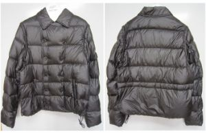 Double-Breasted Men′s Down Coat (W15)