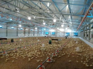 Poultry Farm, Chicken House for Broiler (CH-41) pictures & photos