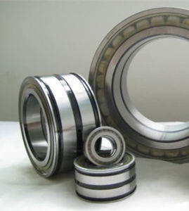 SL045020PP Double Seal Double-Row Full Complement Cylindrical Roller Bearings pictures & photos