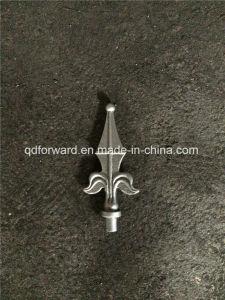Ornamental Arrowheads pictures & photos