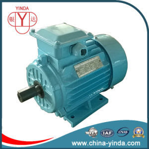 Ie2 Tefc - IP54 Three Phase AC Motor pictures & photos