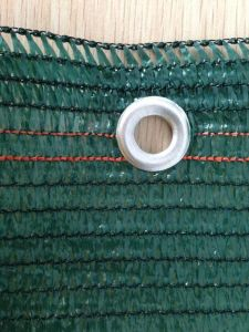Three Needles Sun Shade Plastic Net for Agriculture pictures & photos