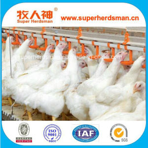 Poultry Equipment Nipple Drinker for Chickem pictures & photos