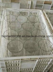 Borosilicate Glass Cylinder Tube Light Lamp Shade pictures & photos