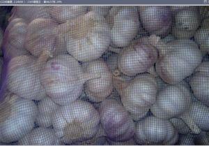 6.0cm Normal White Garlic pictures & photos