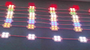4LEDs 5050 Injection LED Module pictures & photos