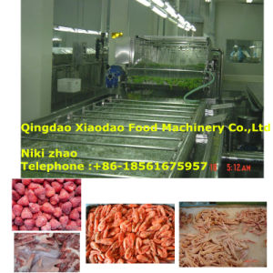 Frozen Meat /Seafood/Fruit Thawing Machine pictures & photos