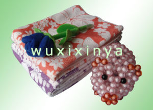 Microfiber Cleaning Cloth (XY-025)