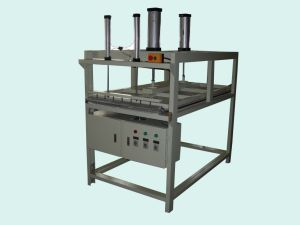 Vacuum Pillow Packing Machine (AV-800)