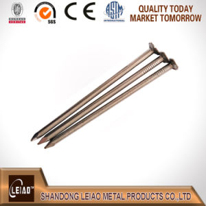 Common Wire Nail pictures & photos