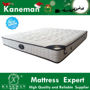 Garden Furniture Sofa Bed Mattress Vacuum Compressed Packed Latex Spring Mattress pictures & photos