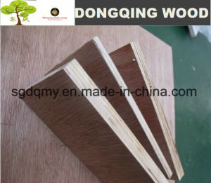 6mm Thick Plywood Price Standard Size for Philippines pictures & photos