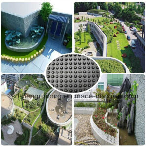 Plastic Drain Board for Green-House Top Construction pictures & photos