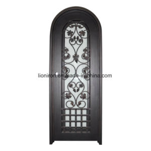 Glass Front Doors with Wrought Iron pictures & photos