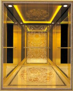 Home Hydraulic Villa Elevator with Italy Gmv System (RLS-226) pictures & photos