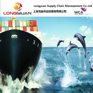 Logistics Service Sea Freight (Shanghai to LONGONI, Mayotte)