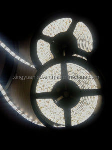 LED Strip Light (BF-XY-5050-60-1M)