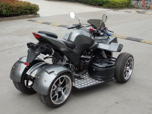 250cc EEC ATV on Road pictures & photos