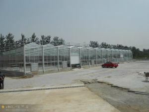 Hot Sale Quality Galvanized Steel Skeleton for Greenhouses pictures & photos