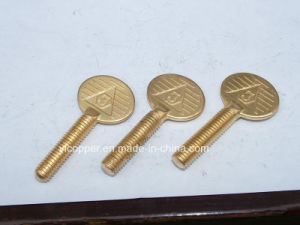Brass Custom Forging Parts pictures & photos