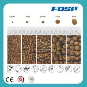 Best Selling CE/ISO/SGS Approved Fish Feeding Equipment pictures & photos