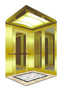 Ti-Gold Passenger Lift Elevator Luxry pictures & photos