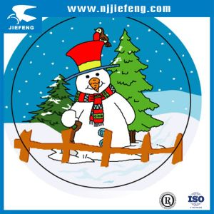 Snow Car Motorcycle Body Sticker Decal pictures & photos