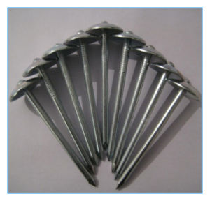 Super Quality Common Round Galvanized Iron Nails / Roofing Nails