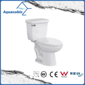 South America Bathroom Ceramic Two Piece Toilet pictures & photos