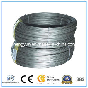 Electro or Hot Dipped Galvanized High Carbon Steel Wire pictures & photos