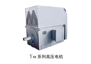 Y, Ykk Low Voltage High Power Three Phase Induction Motor pictures & photos