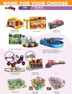 Super Speed Racing Car Turn Around Amusement rides for Amusement park pictures & photos
