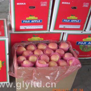 with Global Gap Certificate Fresh FUJI Apple pictures & photos