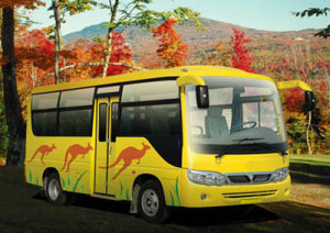Mini Bus (YCK6600)