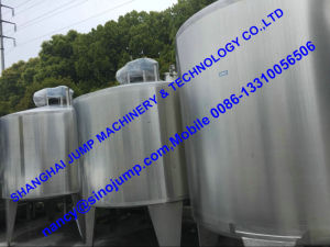 304 Stainless Steel Jackfruit Puree Production Line/Production Line pictures & photos