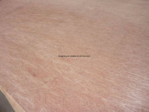 3mm Plywood/Okoume Plywood/Pine Plywood/Bintangor Plywood pictures & photos