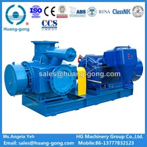 Huanggong Machinery Group Twin Screw Pump (2HM2500-112) pictures & photos