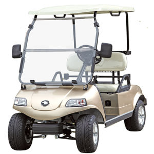 Golf Cart / Buggy /Car with Solar Panel 2seat pictures & photos