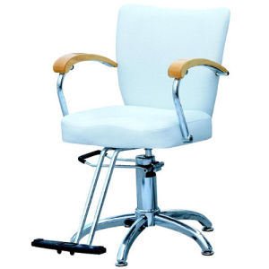 Hydraulic Styling Chair (VB-3823)