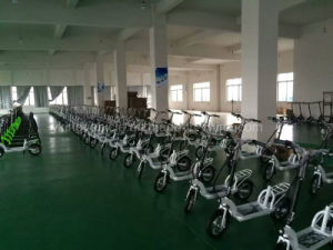 Carbon Steel Electric Scooter/Light Weight Electric Bike with 36V300W Brushless Motor pictures & photos