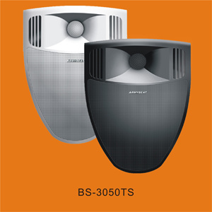Speaker (BS-3050TS) pictures & photos