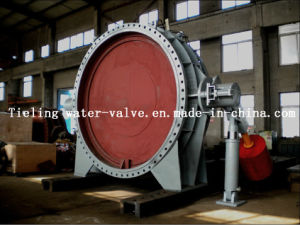 Butterfly Valve with Hydraulice System (DS43R)