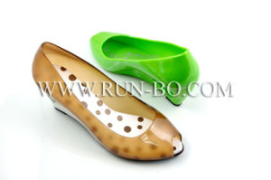 Women′s Mid-Heel Fashion Lady Shoe (#RX-AK90401)