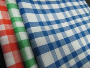 100% Cotton Yarn Dyed Poplin Checks pictures & photos