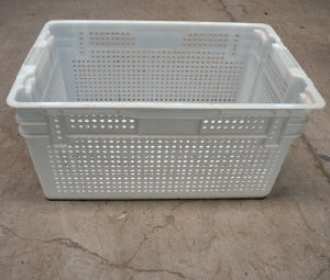 Stackable and Nestable Wire Mesh Plastic Crate, Used for Fruits and Vegetables, PP Material pictures & photos