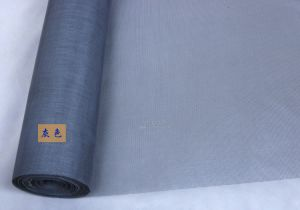 Factory Supply PP/PE Window Screen in Good Quality pictures & photos