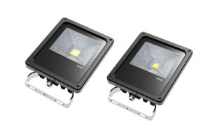 Outdoor IP65 10W LED Floodlight (TG10)