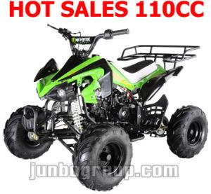 CE 110CC ATV 125CC ATV 110CC Quad 125CC (ATV DR730)
