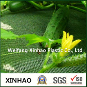Weed Control Mat Fabric for Agricultural Plants pictures & photos